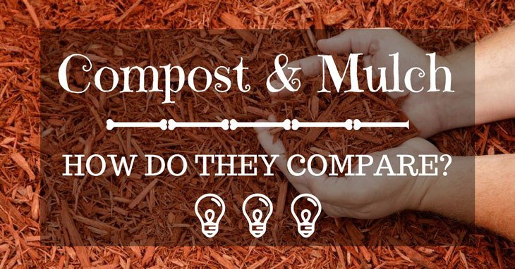 compost vs mulch