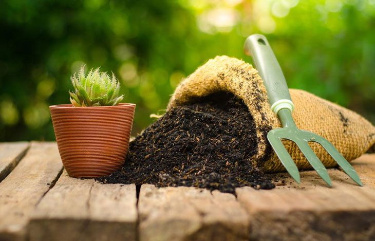 difference between potting soil and potting mix 002